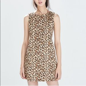 Zara Leopard Print Sleeveless Shift Dress Tan Mini